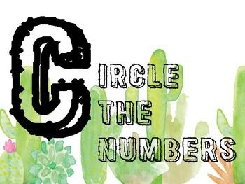 Cactus Theme- CUBES Maths Problem Solving Strategy