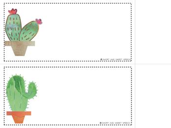 Cactus Theme FREEBIE