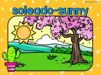 Cactus Theme Weather and Seasons bilingual posters