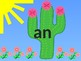 Cactus Themed 1st Grade Dolch Sight Words