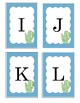 Cactus Uppercase Flashcard set