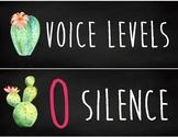 Cactus Voice Levels