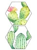 Cactus Welcome Banner  FREEBIE