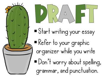 Cactus Writing Process Posters FREEBIE