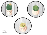 Cactus and Succulent Learning Intention and Success Criter