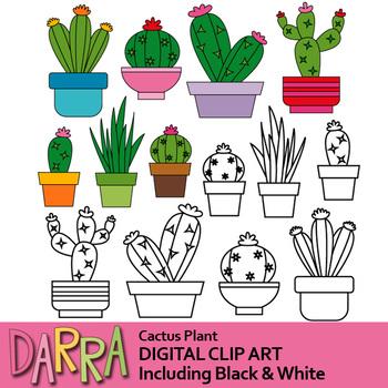 Plant cactus. Clipart