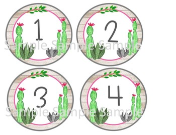 Cactus decor, cactus numbers, 2 sizes, watercolor cactus, number labels, cactus