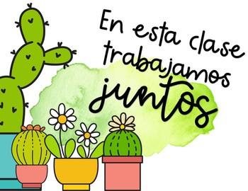 Cactus theme Spanish decor growing set