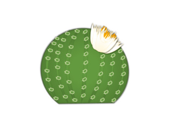 Cactus with Flower Clip-art FREEBIE