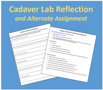Cadaver Lab Reflection and Alternate Assignment