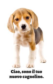 Cagnolini Adorabili: I Beagle (Italian Edition)