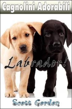 Cagnolini Adorabili: I Labrador (Italian Edition)