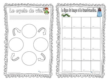 Cahier insectes / bug activities