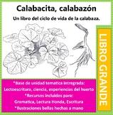 Calabacita, Calabazon: el ciclo de vida de la calabaza A Big Book