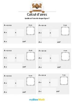 Calcul d'aires 1 - L'aire du carré -CM1