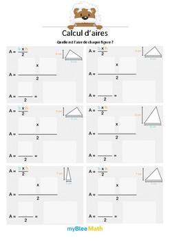 Calcul d'aires - L'aire d'un triangle -6e