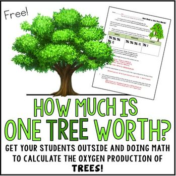 Calculating the Oxygen Production and Carbon Dioxide Absorption of Trees