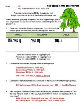 Calculating the Oxygen Production Carbon Dioxide Trees Distance Learning