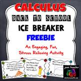 Calculus Back to School Ice Breaker - Fun activity