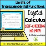 Calculus Limits of Transcendental Functions Quiz Google™ D