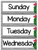 *Editable* Calendar Accessories - Cactus - Succulent - Classroom Decor