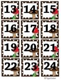 Calendar Cover Mushrooms on Dots 13-24
