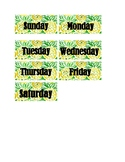 Pineapple Calendar Numbers & Days of the Week