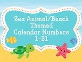 Calendar NumbersSea Animal/Beach Theme