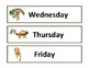 Calendar Set - Monkeys