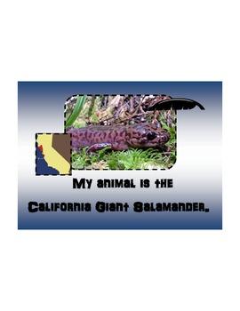 California Giant Salamander Modified Book for Autism