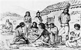 California Indians Project