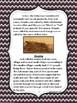 California Native American Indian Series: Achumawi Tribe
