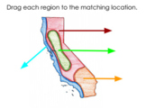 California Regions Activity for Google Classroom