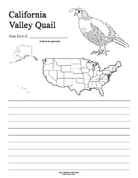 California State Bird Notebooking Set (California Valley Quail)