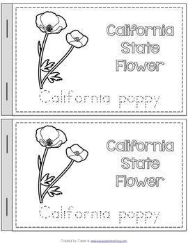 California State Symbols Notebook