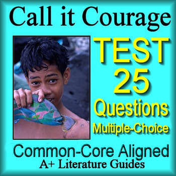 Call It Courage Test