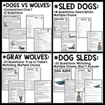 Call of the Wild Informational Text Reading Comprehension Worksheets Set of 9