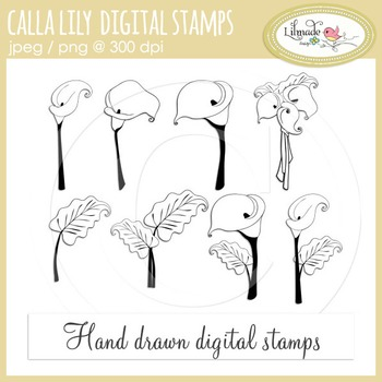 Calla lily digital stamp, coloring pages, floral clip art