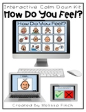 Calm Down Kit- Interactive How Do You Feel Visual