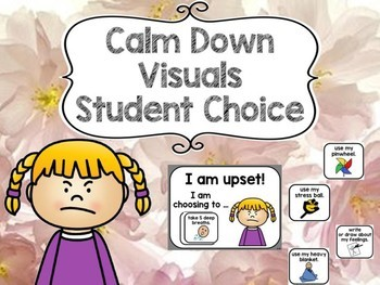 Calm Down Visuals (with student choice) for Autism