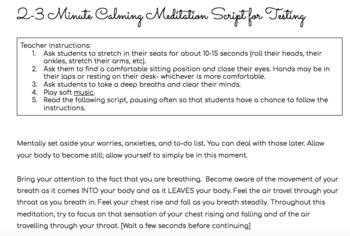 Calming Mindfulness Meditation Script for Testing (2-3 minutes)