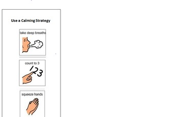 Calming Strategies Desk Visual