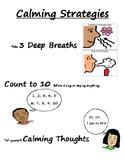 Calming Strategies Poster