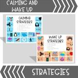 Calming Strategies Visuals / Posters