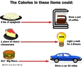 Calorie Lesson Plan (Science)