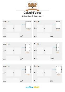 Calxul d'aires 2 - L'aire du rectangle -CM1