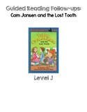 Cam Jansen and the Lost Tooth- Level J