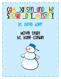 Cam Jansen and the Snowy Day Mystery Novel Study