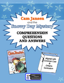 Cam Jansen and the Snowy Day Mystery comprehension questions and answers