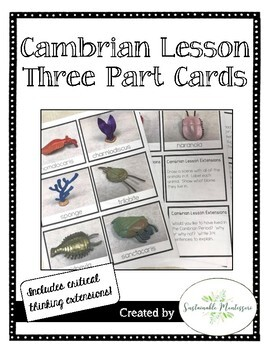 Cambrian Lesson Three Part Cards